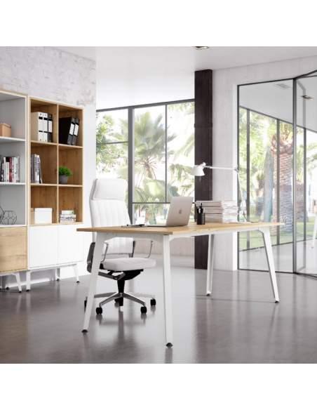 Mesa despacho Organova de Iman en varios colores